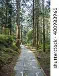 stone stair in green forest   Shutterstock . vector #400983961