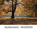 autumn in the park | Shutterstock . vector #40100365
