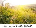 beautiful rural landscape with... | Shutterstock . vector #401103445