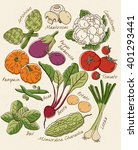fresh vegetables_vol. 2 | Shutterstock .eps vector #401293441