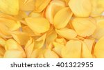 Background Of Yellow Rose Petals