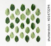 green leaves pattern on white... | Shutterstock . vector #401473294