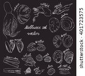 molluscs set vector... | Shutterstock .eps vector #401723575