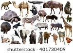 set of different african... | Shutterstock . vector #401730409