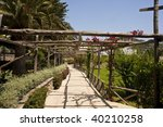 a walkway under an arbor in a... | Shutterstock . vector #40210258