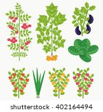 set of vegetables  flat style   ... | Shutterstock .eps vector #402164494