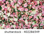 Stock photo closeup image of beautiful flowers wall background with amazing red and white roses 402286549