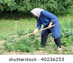 agricultural work | Shutterstock . vector #40236253