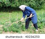 agricultural work | Shutterstock . vector #40236253