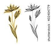 plants. flowers. grass. line... | Shutterstock .eps vector #402404779