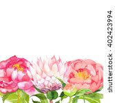 Peony Watercolor  Flowers And...