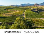 vineyard  san vicente de la... | Shutterstock . vector #402732421