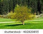 spring in the park | Shutterstock . vector #402820855