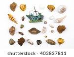 seashells  white background   Shutterstock . vector #402837811