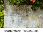 Two Lizards Hiding On The Wall...
