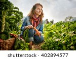 friendly woman harvesting fresh ... | Shutterstock . vector #402894577