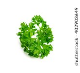 parsley isolated on a white... | Shutterstock . vector #402903649