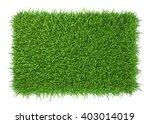 green grass. natural background ...   Shutterstock . vector #403014019
