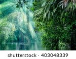 Tortuguero National Park ...
