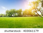 The Beautiful Green Lawn In Th...