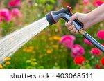 Watering Garden Flowers With...