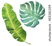 tropical leaves. watercolor... | Shutterstock . vector #403181359