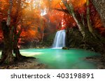 Jangle Landscape With Flowing...