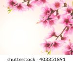 blurred pink spring blossom | Shutterstock . vector #403351891