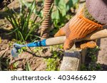 view of a woman's hand hoeing...   Shutterstock . vector #403466629
