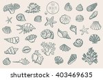 shell undersea world vector...   Shutterstock .eps vector #403469635