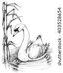 Swan On Lake Sketch