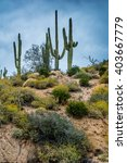 Small photo of Hidden Treasures abound around Phoenix Arizona