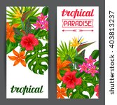 banners with stylized tropical... | Shutterstock .eps vector #403813237