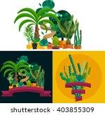 Desert Flowers And Plants...