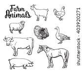 farm animals  cow  pig  chicken ... | Shutterstock .eps vector #403920271