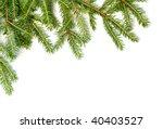 fresh green fir branches... | Shutterstock . vector #40403527