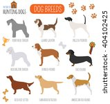 dog breeds. hunting dog set... | Shutterstock .eps vector #404102425