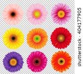 big colorful gerbers set ... | Shutterstock .eps vector #404177905