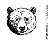 vector pen and ink hand drawn...   Shutterstock .eps vector #404229529