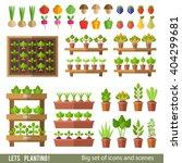vector collection of garden and ... | Shutterstock .eps vector #404299681