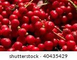 food series  macro picture of... | Shutterstock . vector #40435429