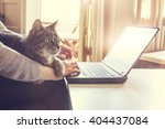 Stock photo cat and notebook 404437084