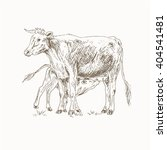 Cow Feeding Calf Sketch. Mom...