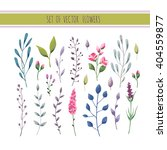 floral watercolor collection... | Shutterstock .eps vector #404559877