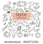 hand drawn doodles of the... | Shutterstock .eps vector #404571331