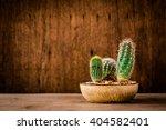 Cactus Wood Cactus On Wood...