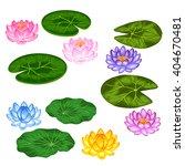 Natural Set Of Stylized Lotus...
