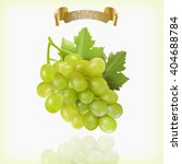 bunch of yellow or green grapes ... | Shutterstock .eps vector #404688784