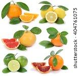 collection of oranges mandarin... | Shutterstock . vector #404761075