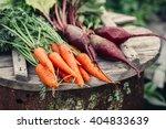 fresh vegetables  carrots and...   Shutterstock . vector #404833639